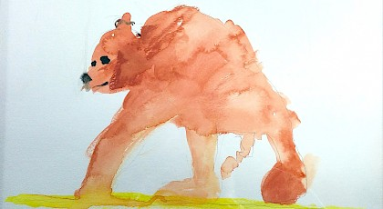Bear - Nate Fishkin (watercolor)