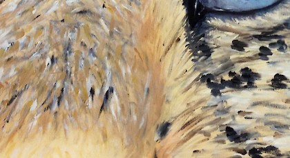 Leopard's Eye - Allison Bernheimer (oil on canvas)